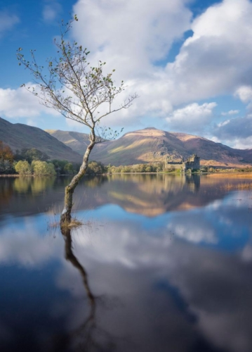 The Tree Loch Awe Flood, Vinny Keenan